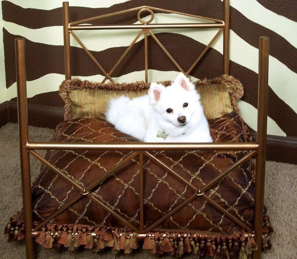 Кованые кровати для собак
