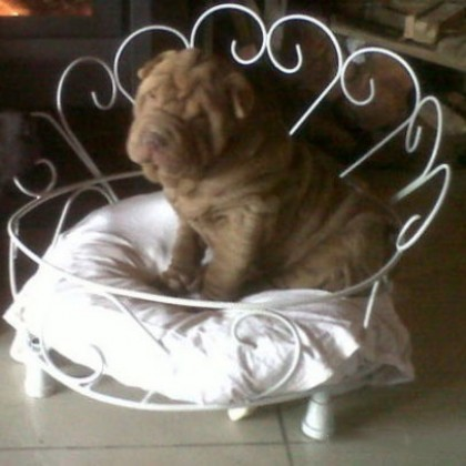 Кованая кровать Доор 1