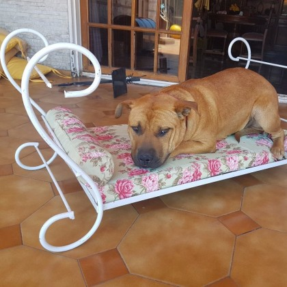 Кованая кровать Тонда 1